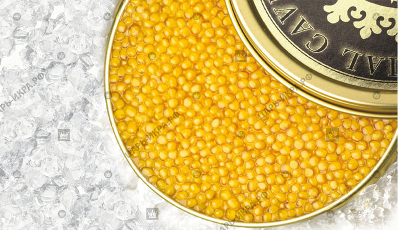 Golden Caviar